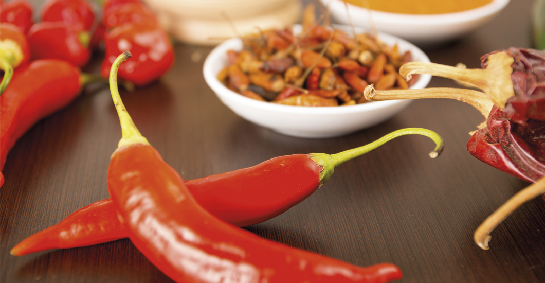 The Chili Pepper, a flavor that heals.